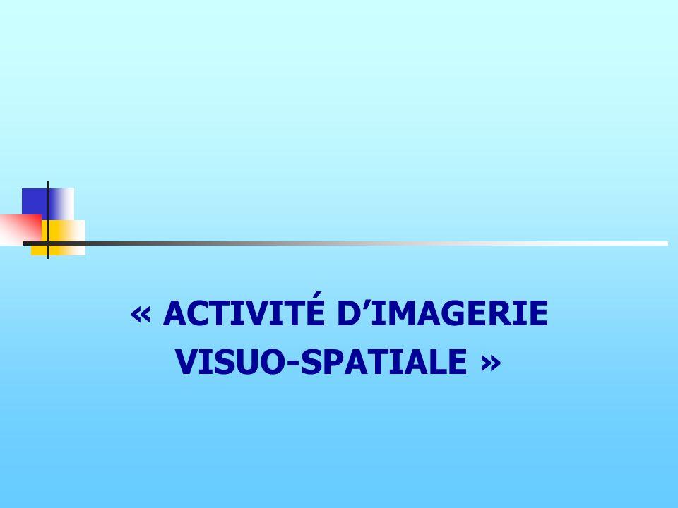 « ACTIVITÉ D'IMAGERIE VISUO-SPATIALE »