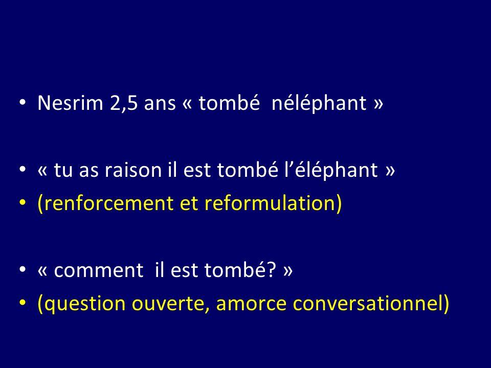 Nesrim 2,5 ans « tombé néléphant »