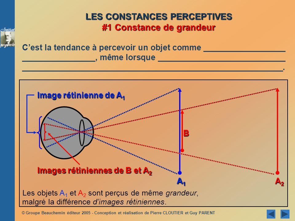 LES CONSTANCES PERCEPTIVES #1 Constance de grandeur