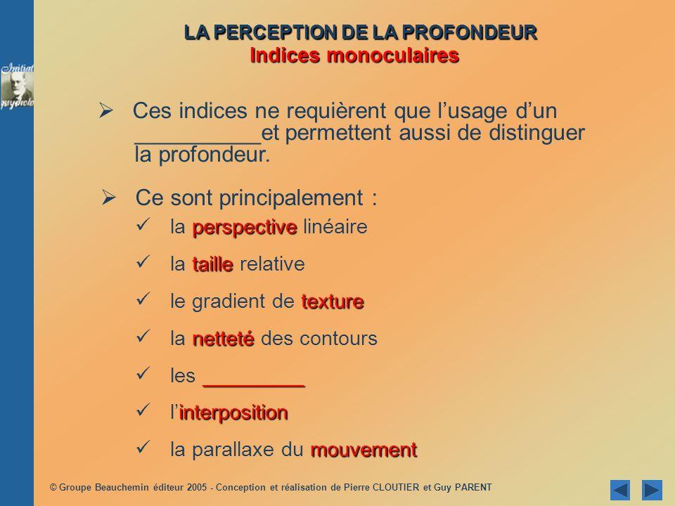 LA PERCEPTION DE LA PROFONDEUR