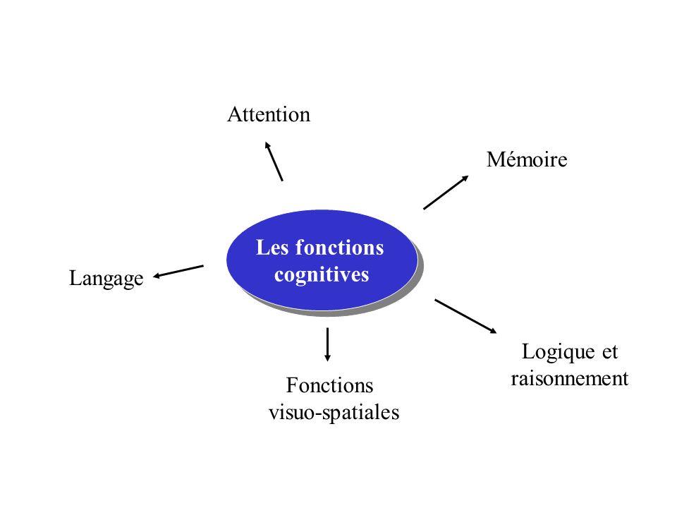 Attention Mémoire. Les fonctions. cognitives. Langage.