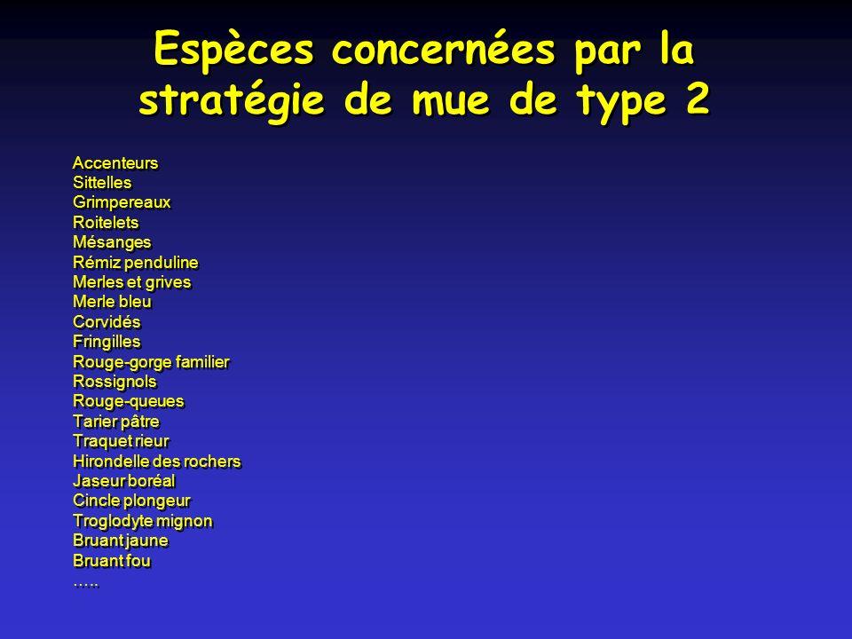 Espèces concernées par la stratégie de mue de type 2