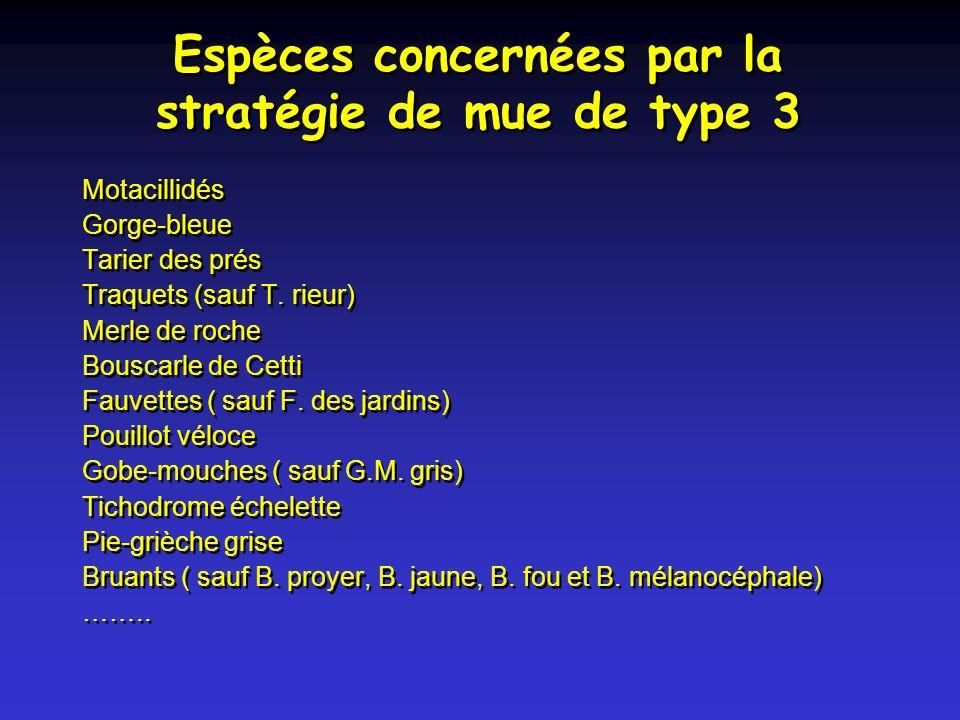 Espèces concernées par la stratégie de mue de type 3