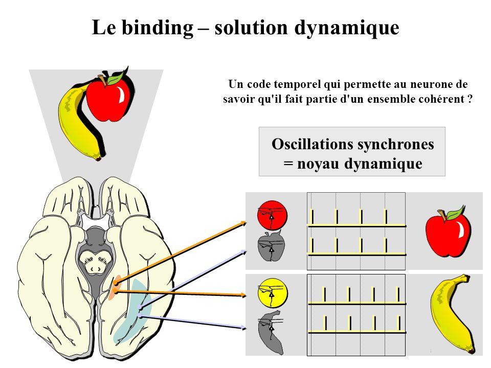 Le binding – solution dynamique