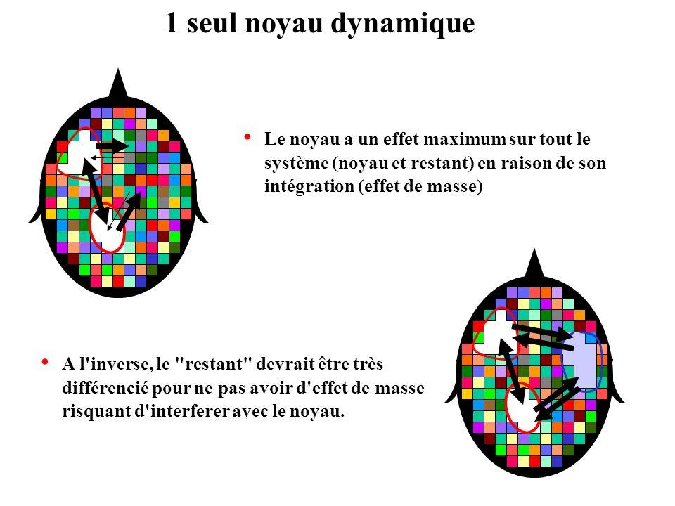 1 seul noyau dynamique Le noyau a un effet maximum sur tout le système (noyau et restant) en raison de son intégration (effet de masse)