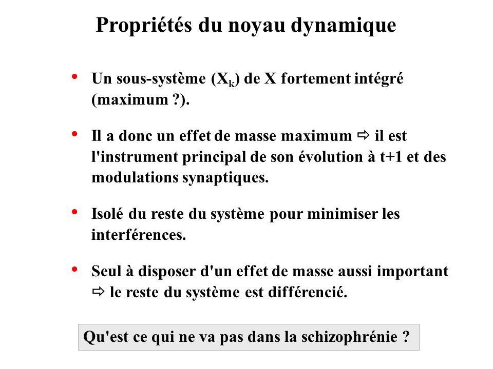 Propriétés du noyau dynamique