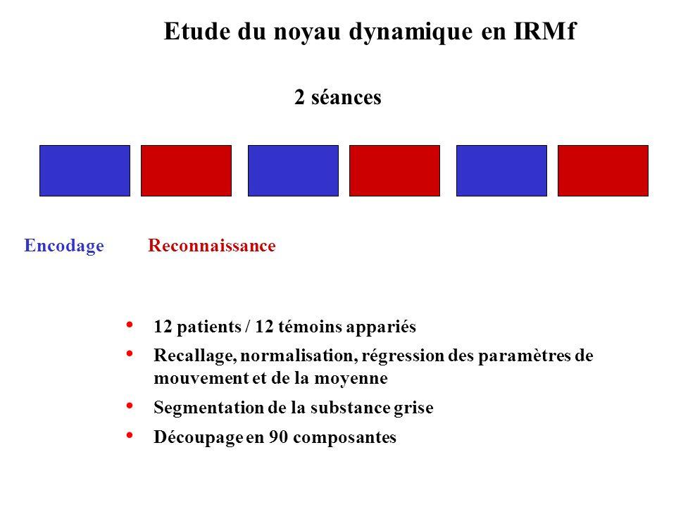Etude du noyau dynamique en IRMf