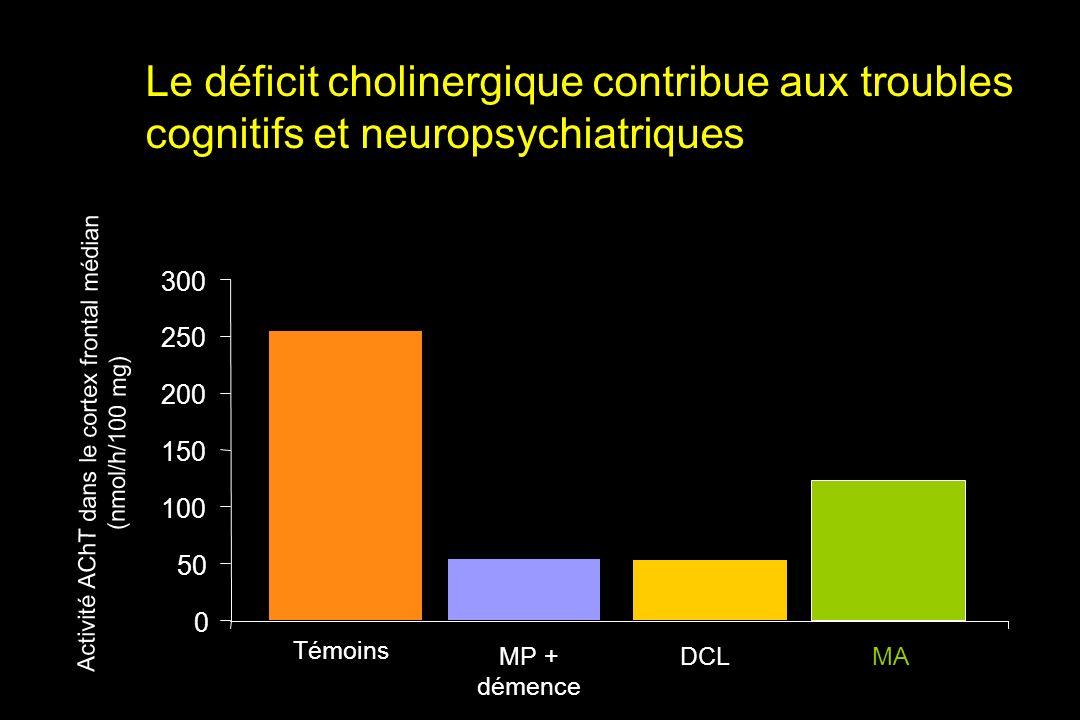 Activité AChT dans le cortex frontal médian