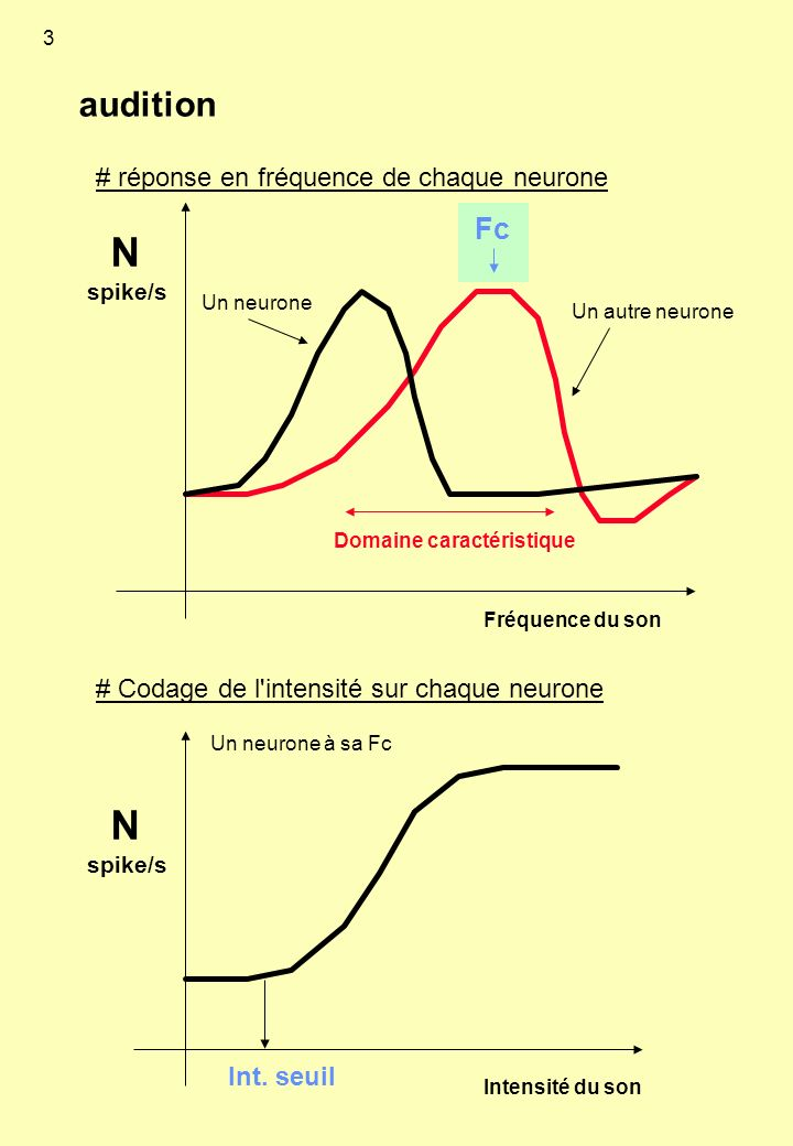 N N audition Fc # réponse en fréquence de chaque neurone