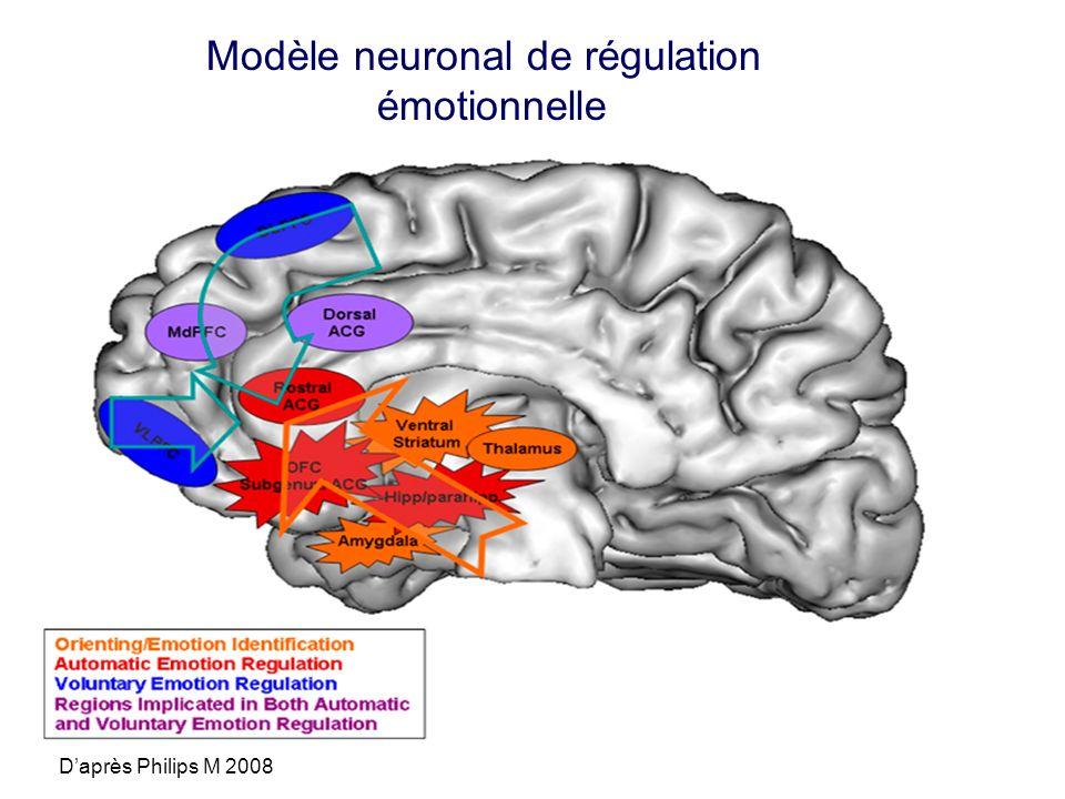 Modèle neuronal de régulation