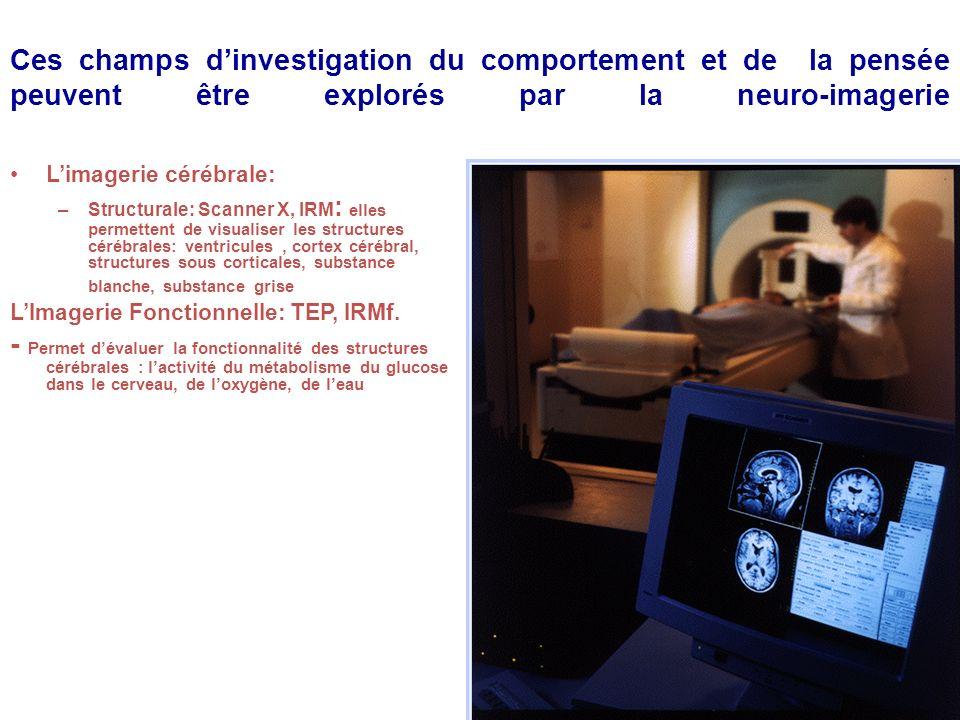Ces champs d'investigation du comportement et de la pensée peuvent être explorés par la neuro-imagerie