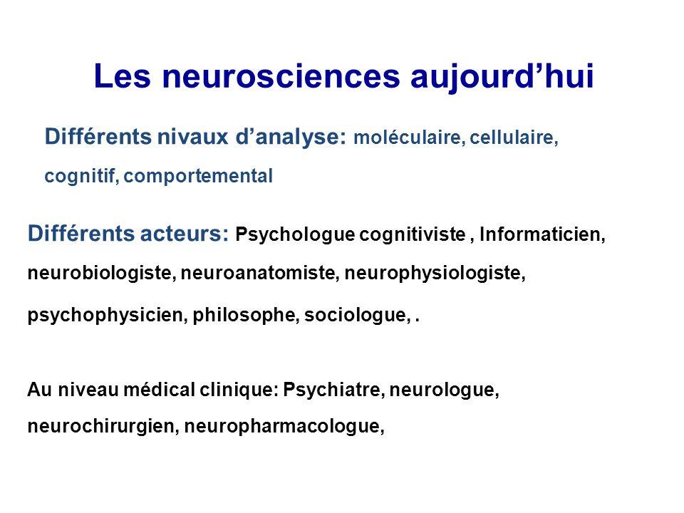 Les neurosciences aujourd'hui