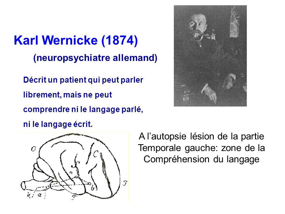 Karl Wernicke (1874) (neuropsychiatre allemand)