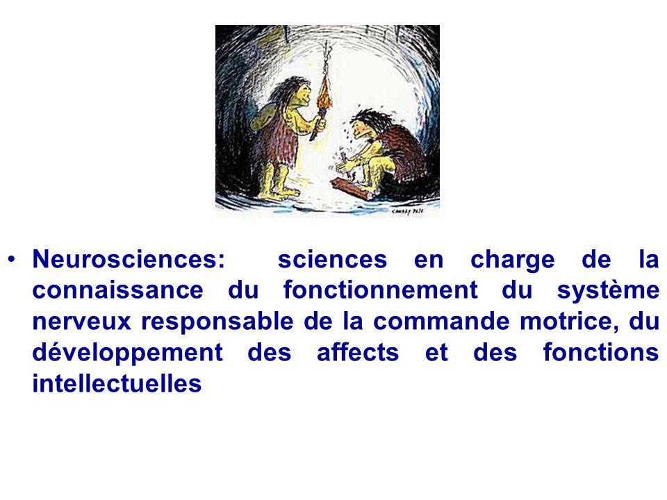 Neurosciences: sciences en charge de la connaissance du fonctionnement du système nerveux responsable de la commande motrice, du développement des affects et des fonctions intellectuelles