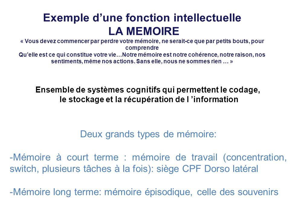 Exemple d'une fonction intellectuelle LA MEMOIRE