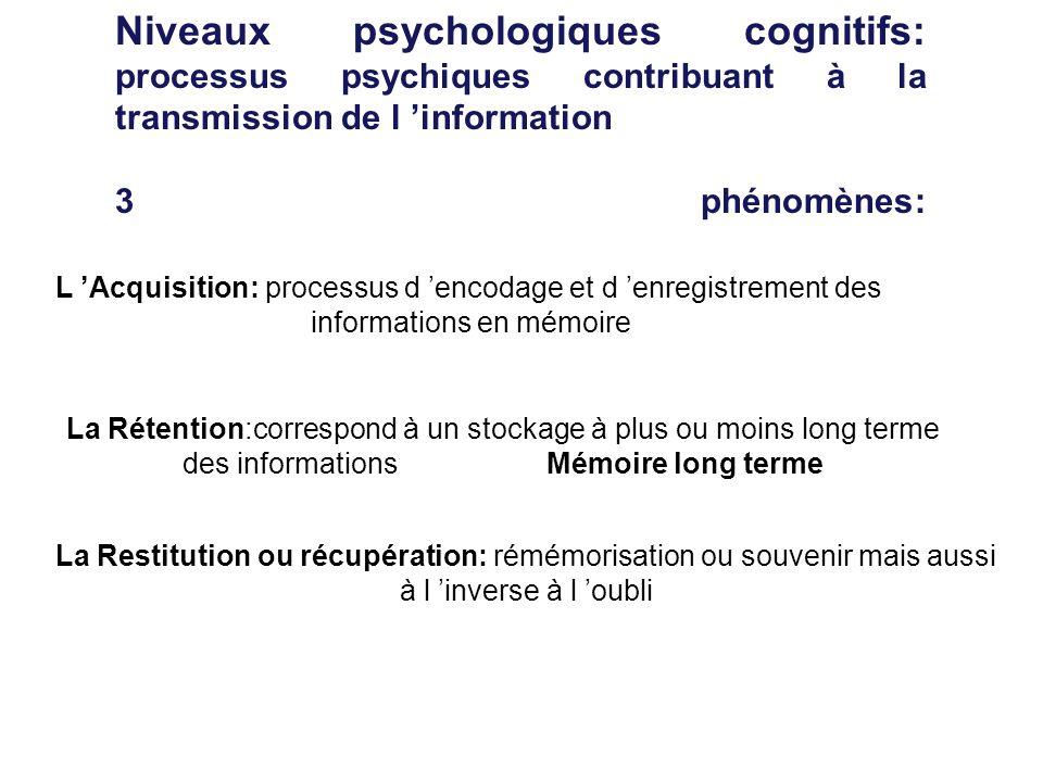 Niveaux psychologiques cognitifs: processus psychiques contribuant à la transmission de l 'information