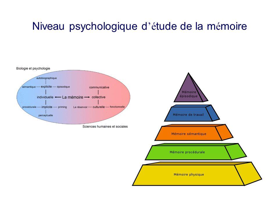 Niveau psychologique d'étude de la mémoire