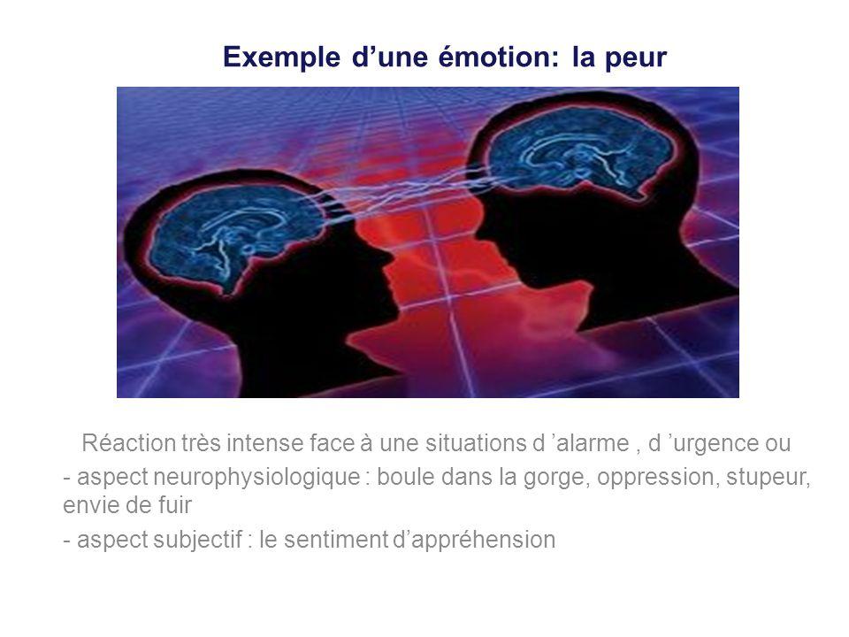 Exemple d'une émotion: la peur