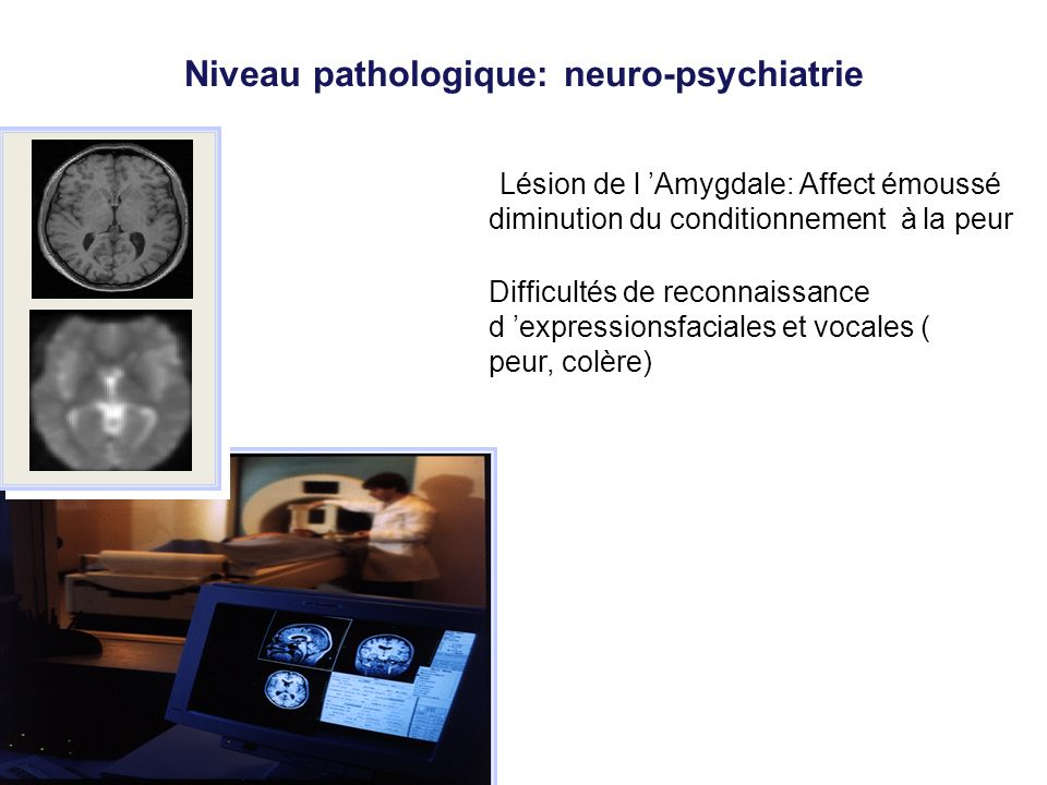 Niveau pathologique: neuro-psychiatrie