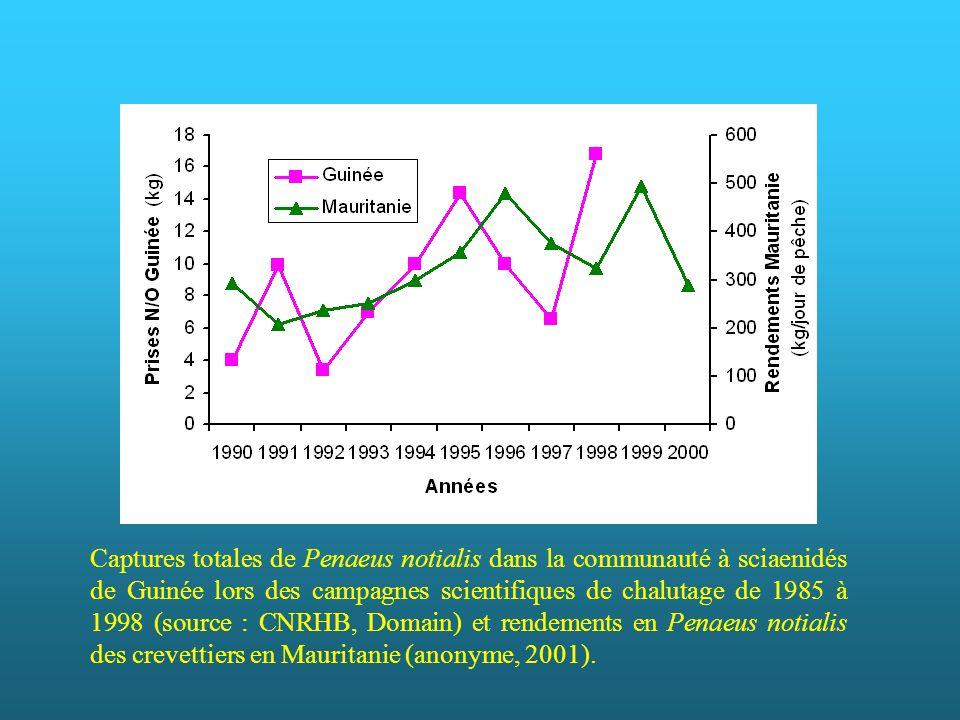 Des chercheurs travaillant dans les régions concernées nous ont fait part d un développement récent de la pêche à la crevette rose en Mauritanie et en Guinée, qui serait dû à une augmentation de l abondance (Inejih C., Domain F., comm. pers.). Cette augmentation serait détectable à partir des résultats des campagnes de chalutage en Guinée, bien que le chalut utilisé et la zone prospectée (communauté côtière des sciaenidés) soient mal adaptés à l échantillonnage de la crevette rose, et aussi dans les rendements des crevettiers en Mauritanie.