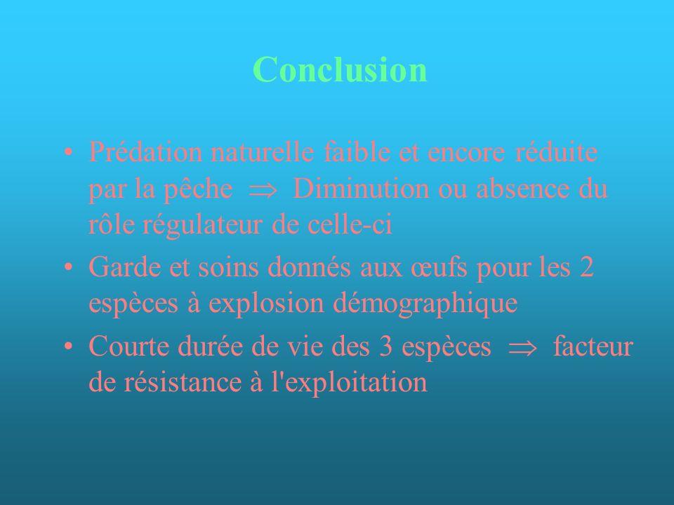 Conclusion Prédation naturelle faible et encore réduite par la pêche  Diminution ou absence du rôle régulateur de celle-ci.