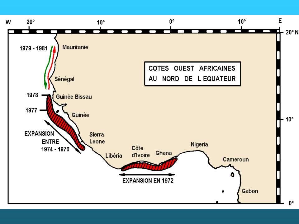 Les côtes du Sénégal sont atteintes en 1978 pour la région Sud-Dakar (Petite-Côte et Casamance), en 1979 pour la région Nord-Dakar et la Mauritanie. Dans cette région, les balistes étaient abondants de 1980 à 1982, surtout au large de la Gambie et de la Casamance.