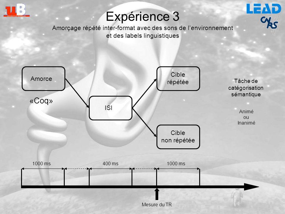 Expérience 3 Amorçage répété inter-format avec des sons de l'environnement. et des labels linguistiques.