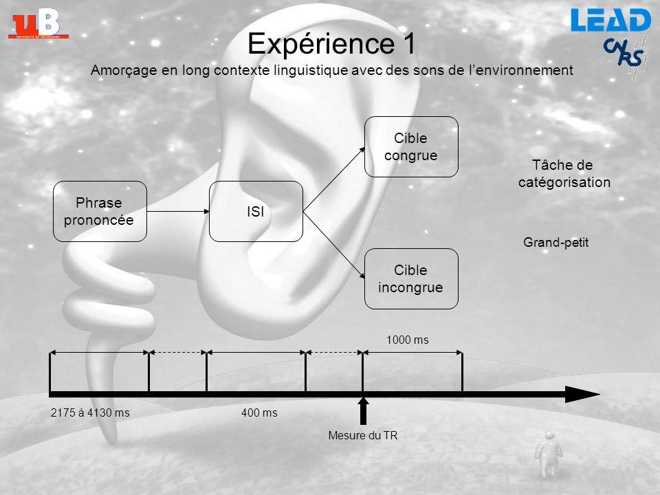 Expérience 1 Amorçage en long contexte linguistique avec des sons de l'environnement. Cible. congrue.