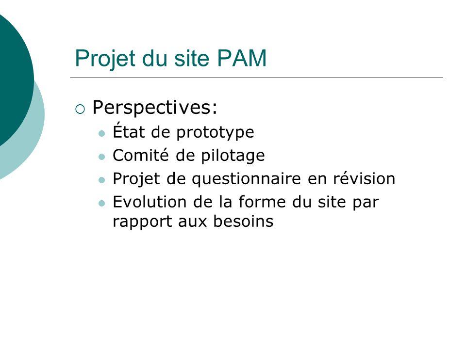 Projet du site PAM Perspectives: État de prototype Comité de pilotage