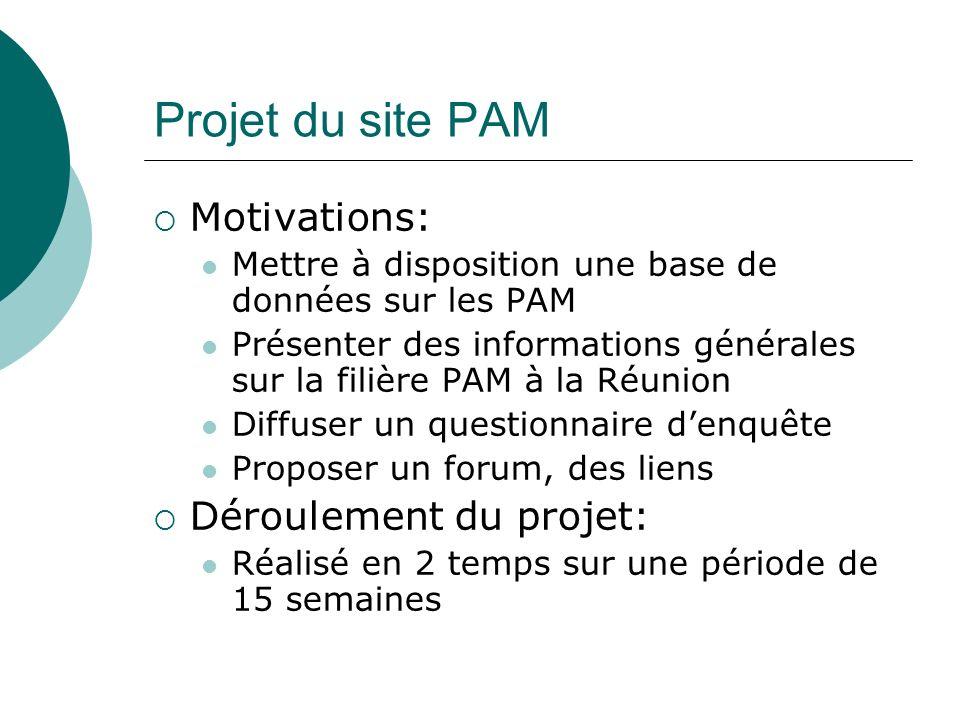 Projet du site PAM Motivations: Déroulement du projet: