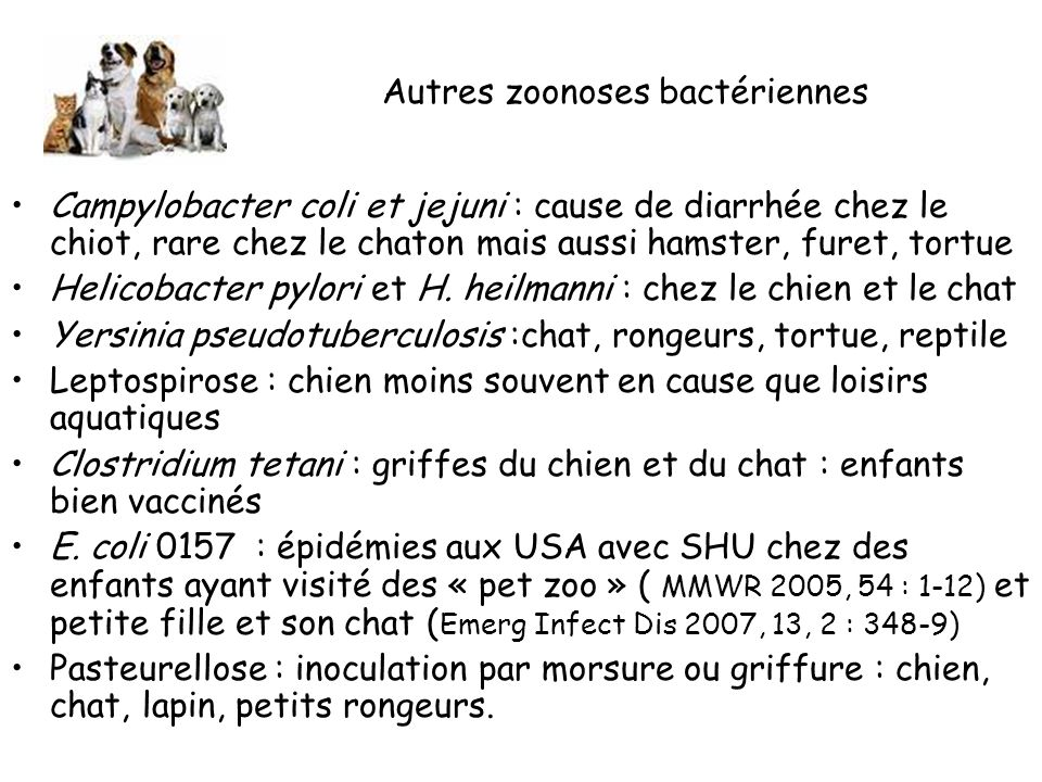 Autres zoonoses bactériennes