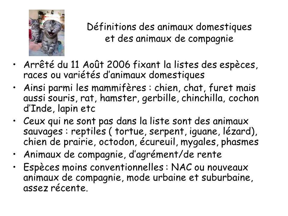 Définitions des animaux domestiques et des animaux de compagnie