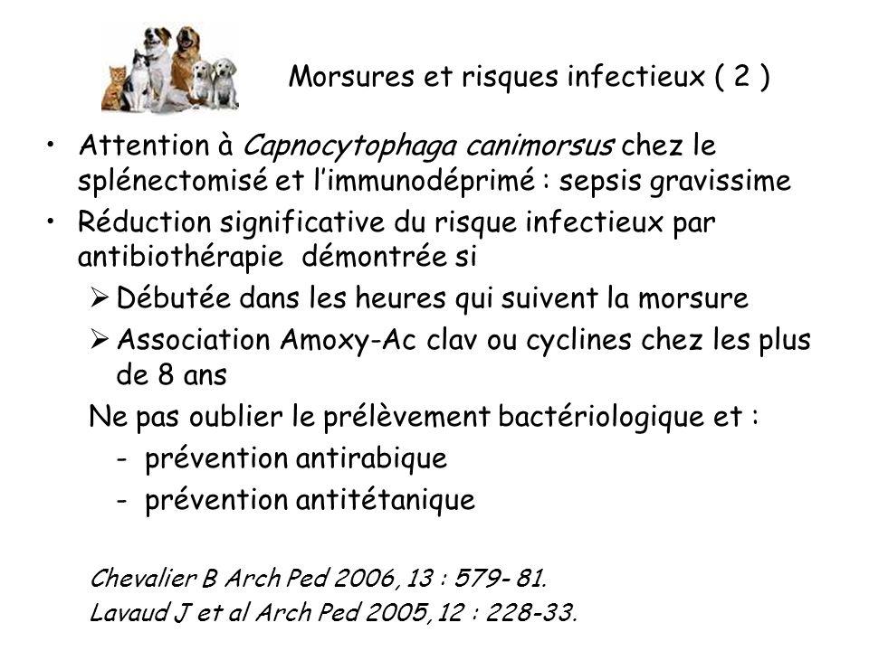 Morsures et risques infectieux ( 2 )