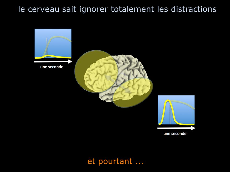 le cerveau sait ignorer totalement les distractions