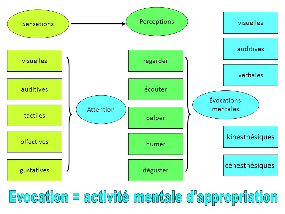 Evocation = activité mentale d appropriation