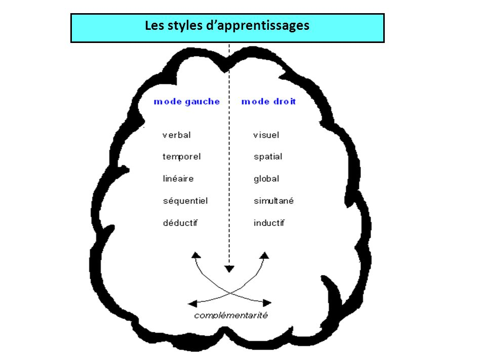 Les styles d'apprentissages