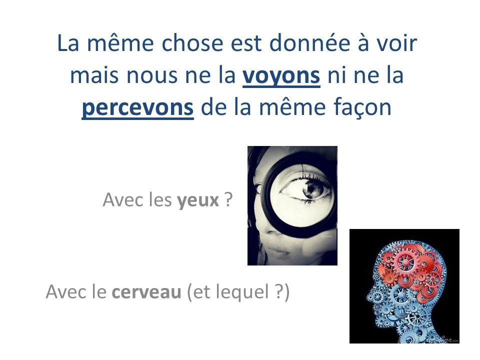Avec les yeux Avec le cerveau (et lequel )