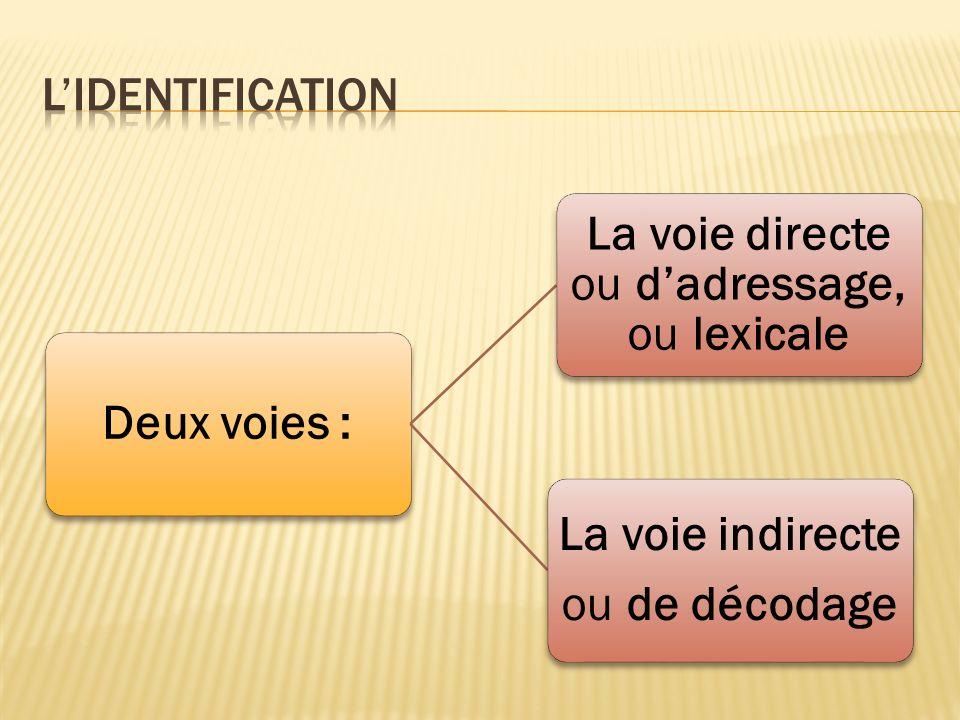 La voie directe ou d'adressage, ou lexicale