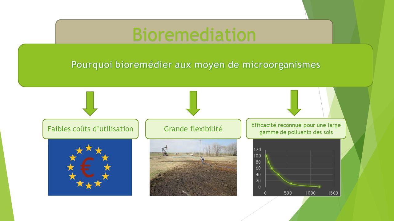 Pourquoi bioremédier aux moyen de microorganismes