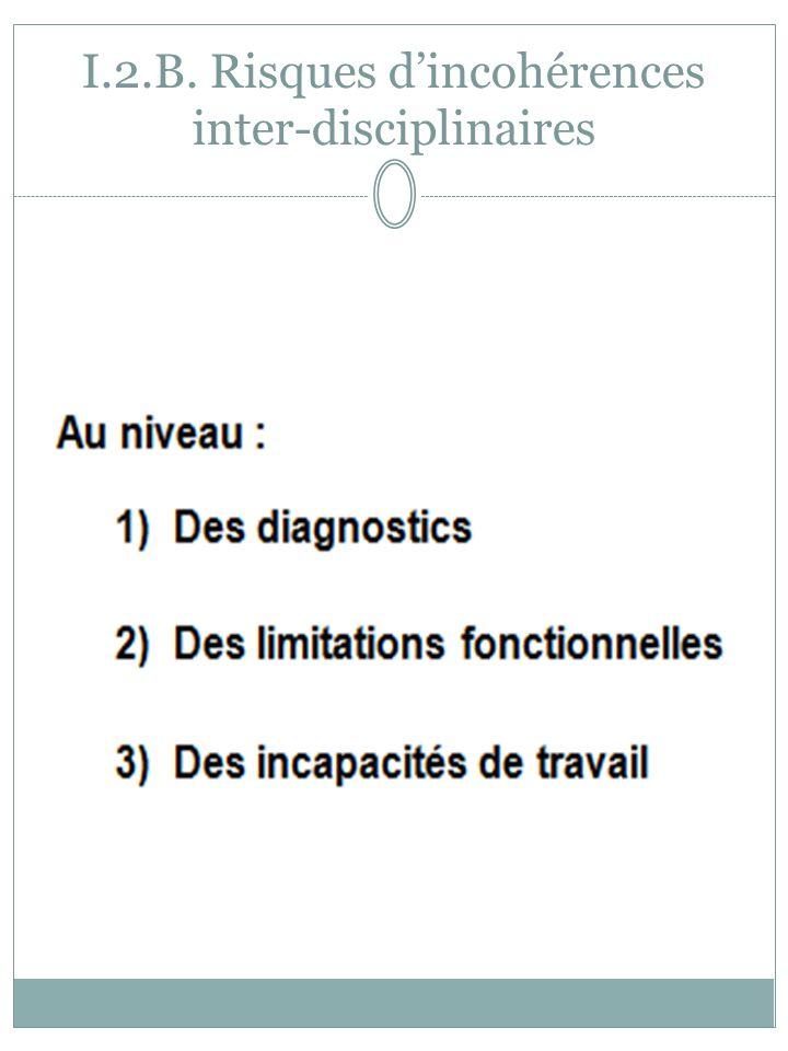 I.2.B. Risques d'incohérences inter-disciplinaires