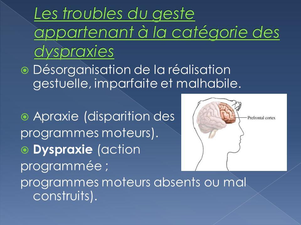 Les troubles du geste appartenant à la catégorie des dyspraxies