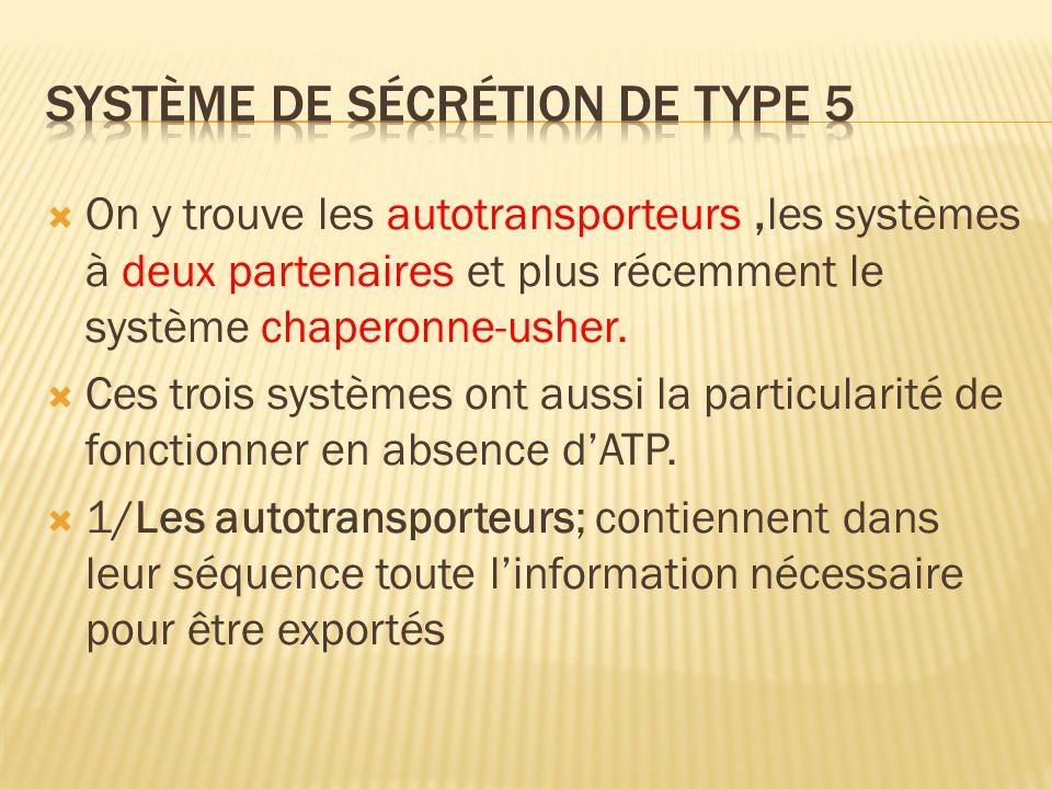 Système de sécrétion de type 5