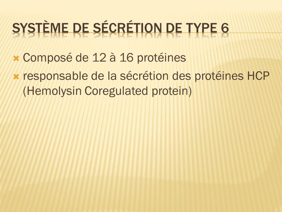 Système de sécrétion de type 6