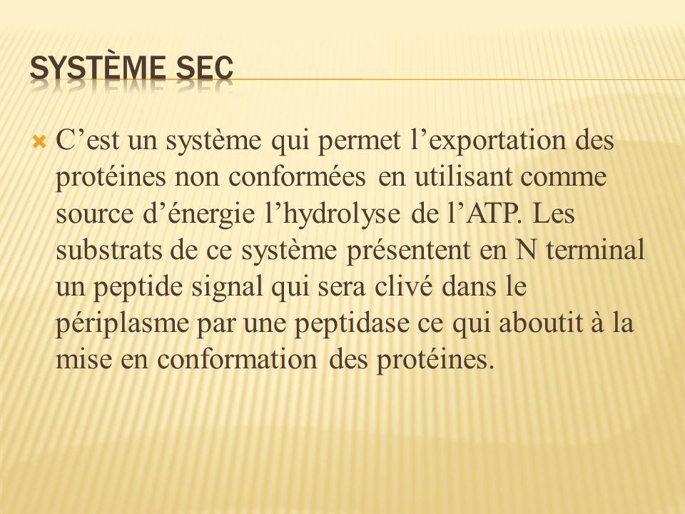 Système sec