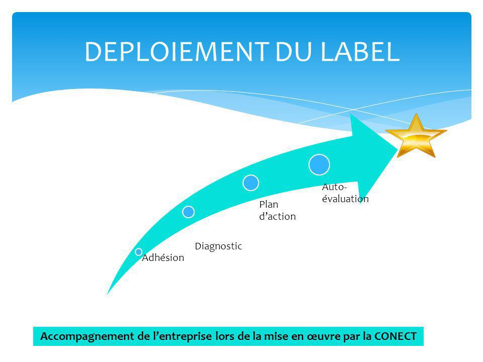 Accompagnement de l'entreprise lors de la mise en œuvre par la CONECT