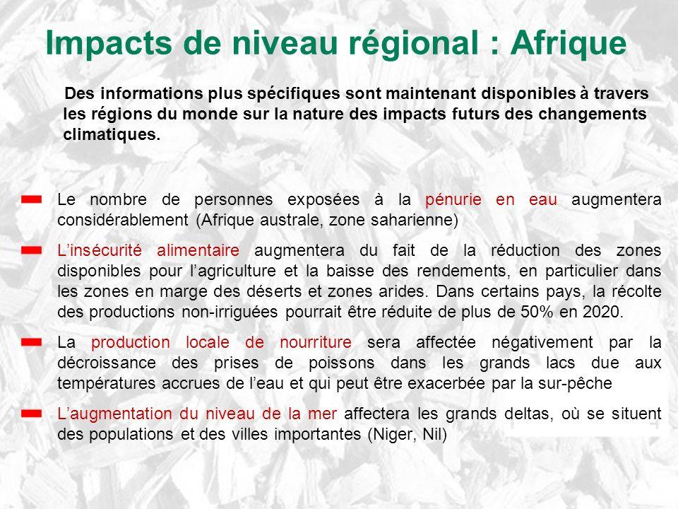 Impacts de niveau régional : Afrique
