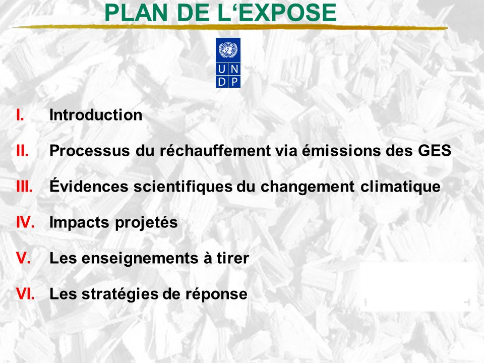 PLAN DE L'EXPOSE Introduction
