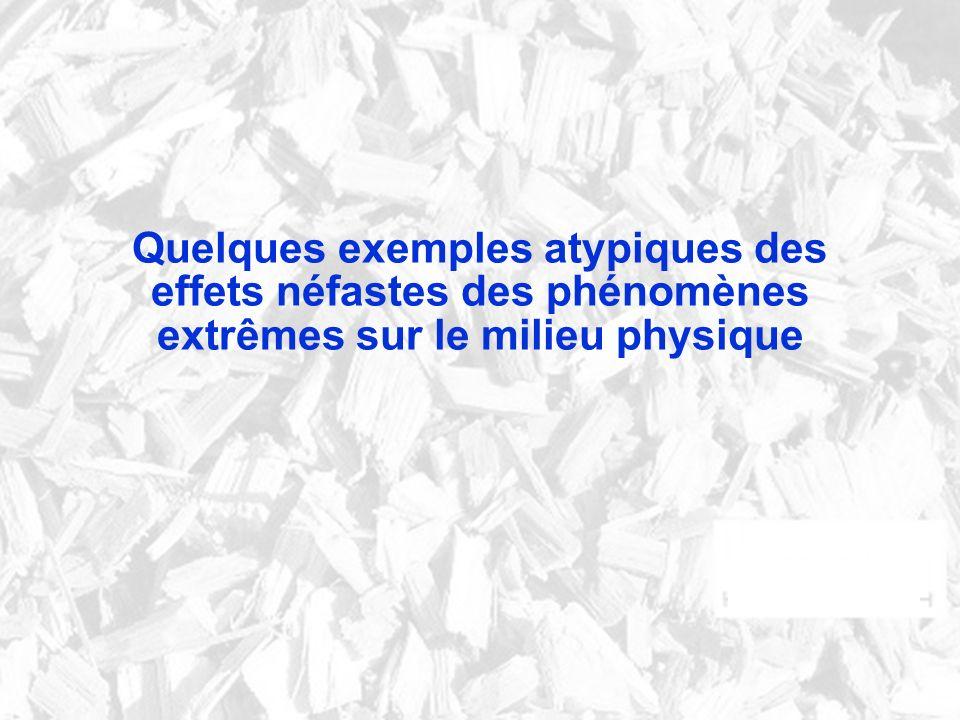 Quelques exemples atypiques des effets néfastes des phénomènes extrêmes sur le milieu physique