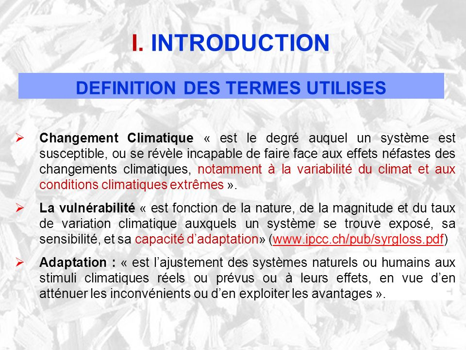 I. INTRODUCTION DEFINITION DES TERMES UTILISES