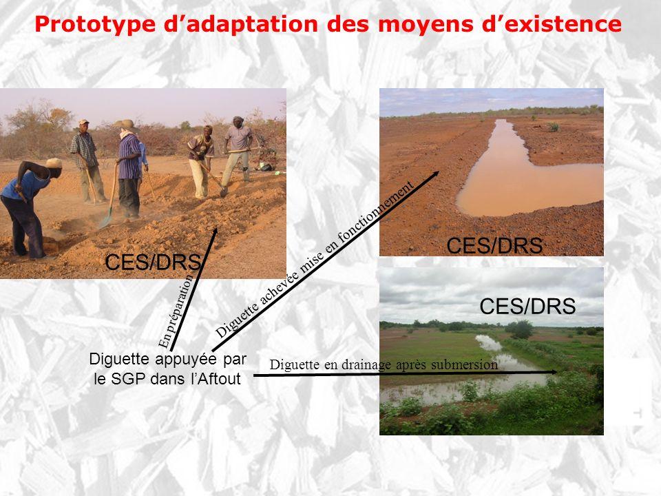 Prototype d'adaptation des moyens d'existence